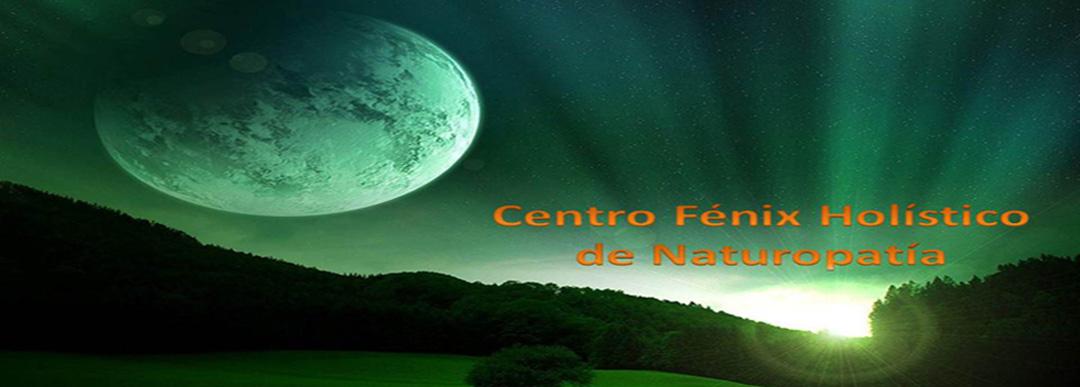 CENTRO FÉNIX