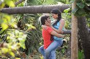 Miss Leelavathi movie hot stills-thumbnail-1