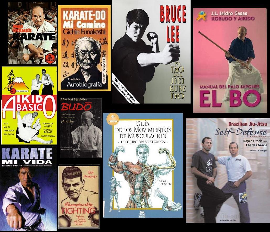 Maestros Marciales.: febrero 2011