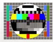 L'AVID VARESE ONLUS IN TELEVISIONE