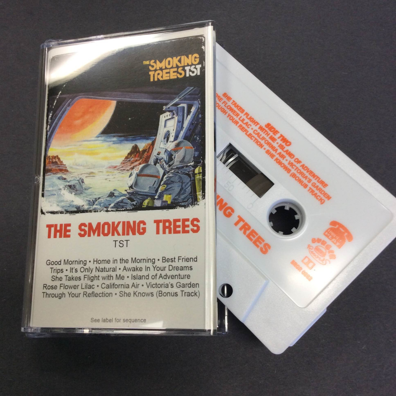The Smoking Trees Tst 2015 Review It S Psychedelic