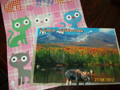 thats the way the cookie crumbles, blog, blogging, snail mail, mail, post, package, penpal, letter, incoming, post card, postcard, view card, maine, wilderness, wild, moose, stationary, stationery, cats, cute, colourful