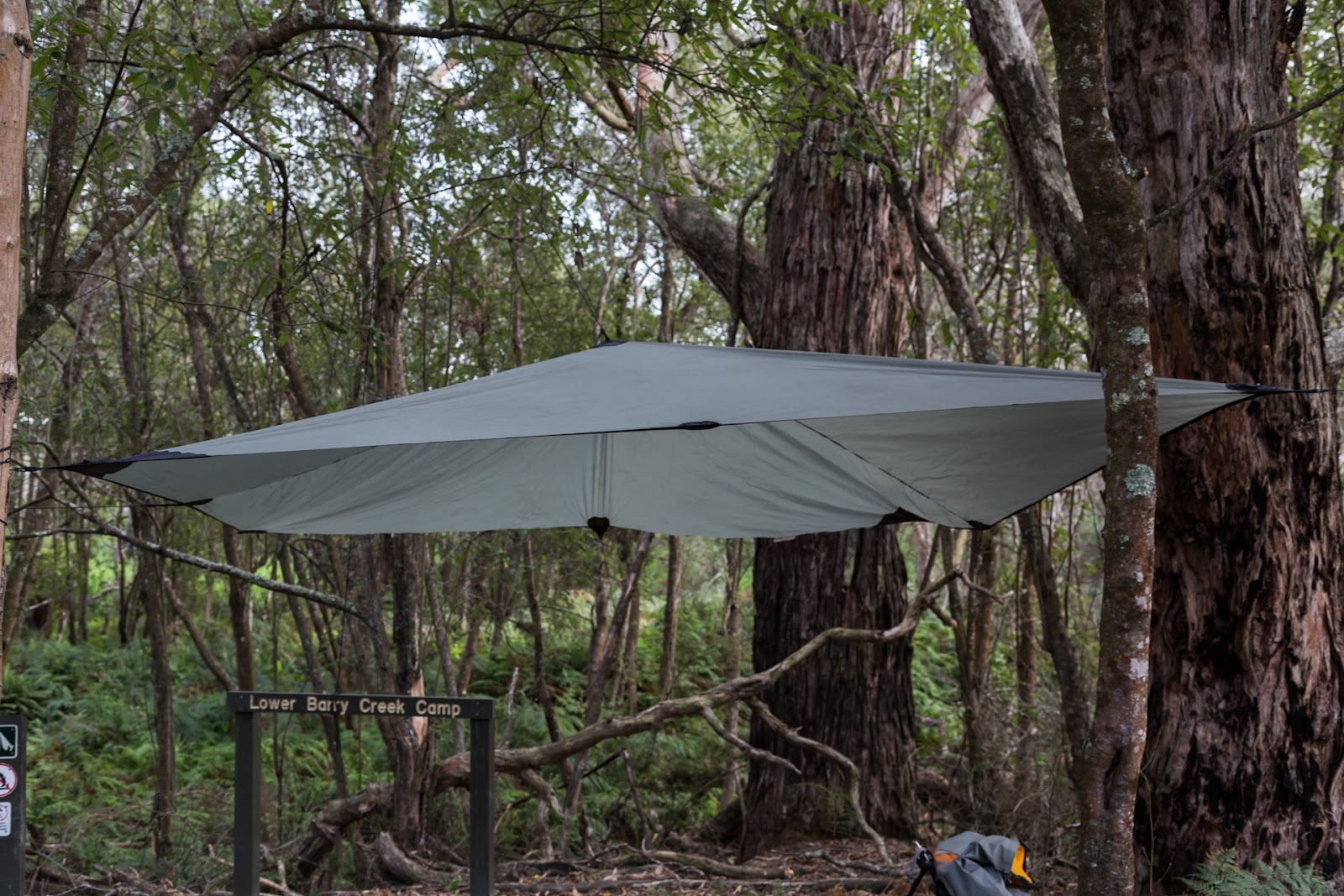 tarp in trees lower barry creek camp wilsons promontory