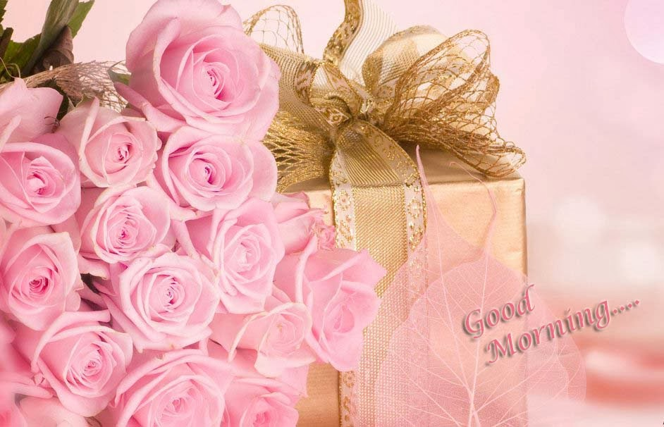 good-morning-rose-pink-gift-celebration-wallpaper