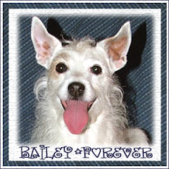 Bailey  RIP
