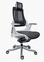 Eurotech Seating Wau Chair with High Back