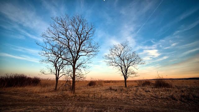 Dry Autumn