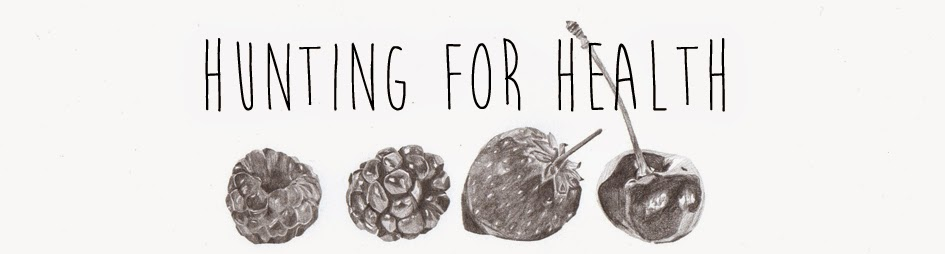 Hunting for Health - A Selection of Surprises by Olivia Huntingford
