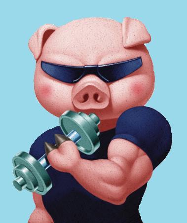 funny-pig-cartoon.jpg