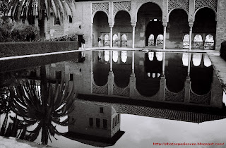Estanque del Partal y Torre de las Damas. Pool in the Partal and Tower of the Damas. Alhambra. Granada. Spain.