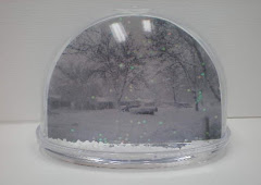 Snow GLobe - Blizzard 2013