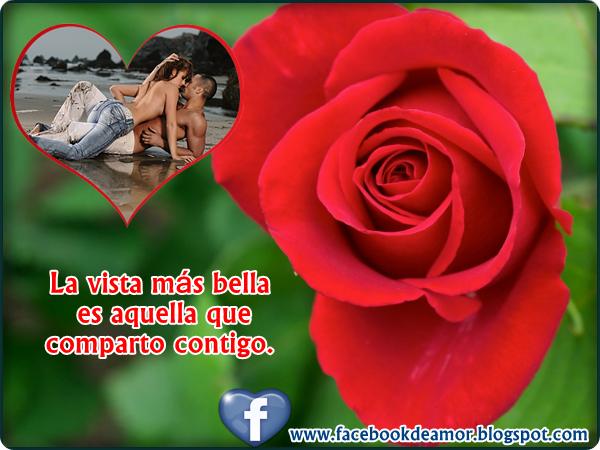 TuParada Facebook - Postales De Amor Animadas Gratis Para Enviar
