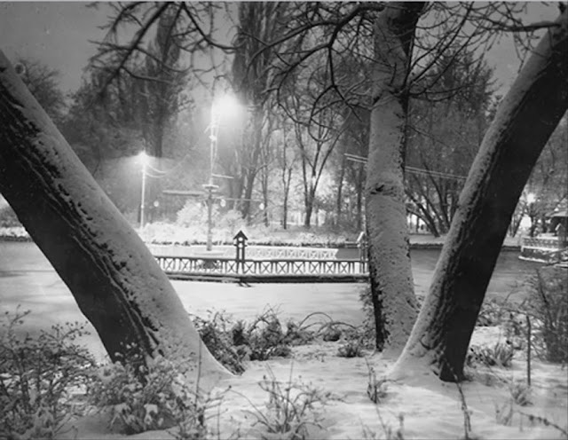 Noapte de iarna in Parcul Cismigiu