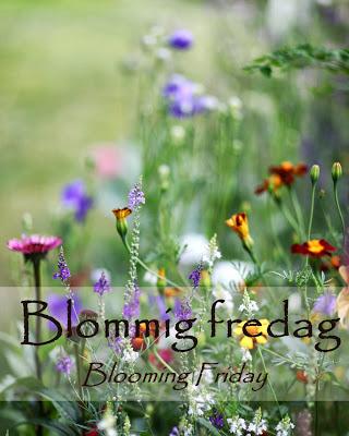 Blommig Fredag!