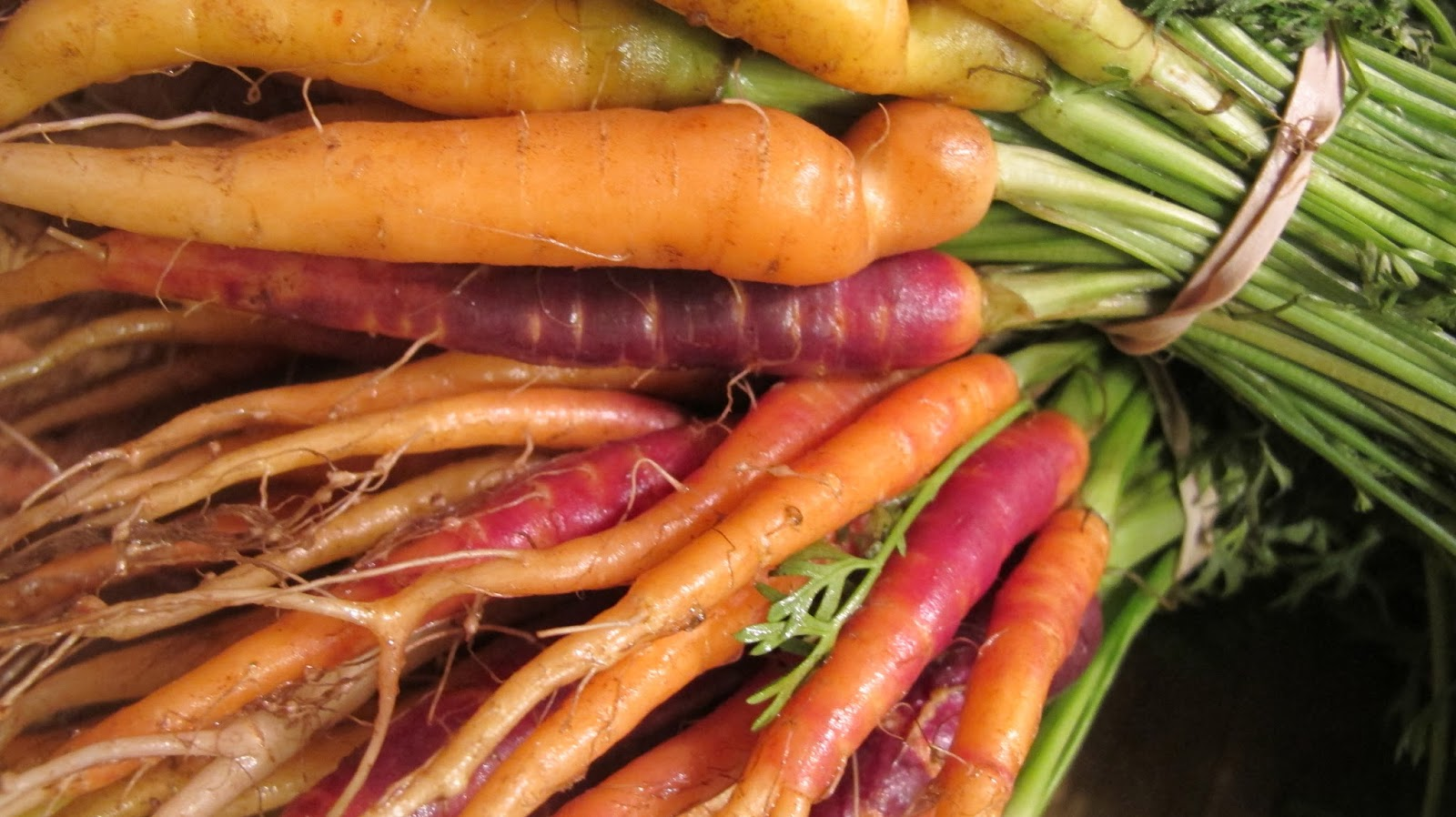 picture Pickled Heirloom Carrots