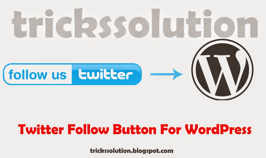 Twitter Follow Button For WordPress