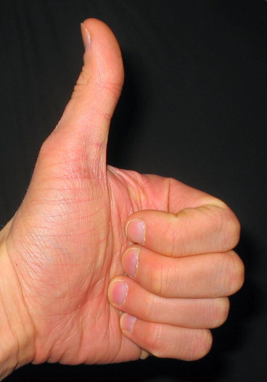 Смотреть фото самых больших кистеи рук 15 фотография