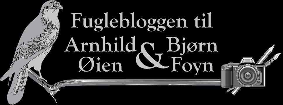 Fuglebloggen til Bjørn Foyn og Arnhild Øien
