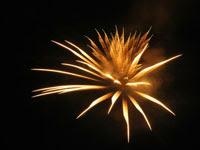 黄色い打ち上げ花火 | 花火のイラストや写真のフリー素材色々。無料で商用可