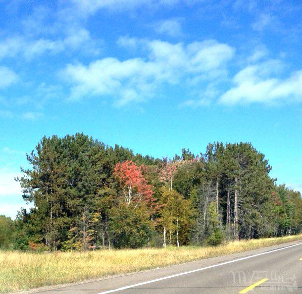 Welcome Fall.