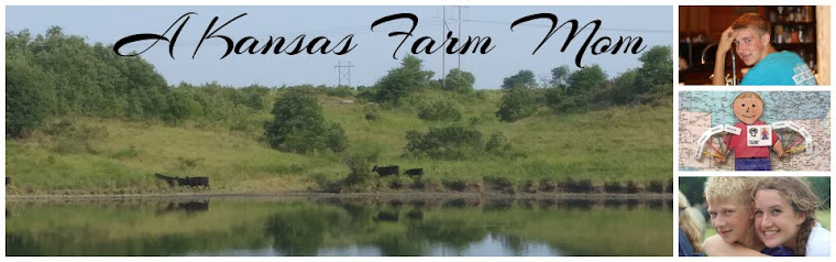 Tales of a Kansas Farm Mom