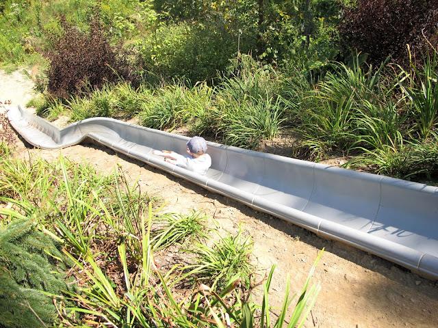 Secrest Arboretum Slide