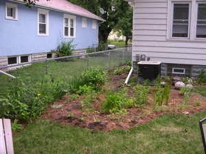 7 Ways to Save Water in Your Yard and Still Have a Pretty Landscape