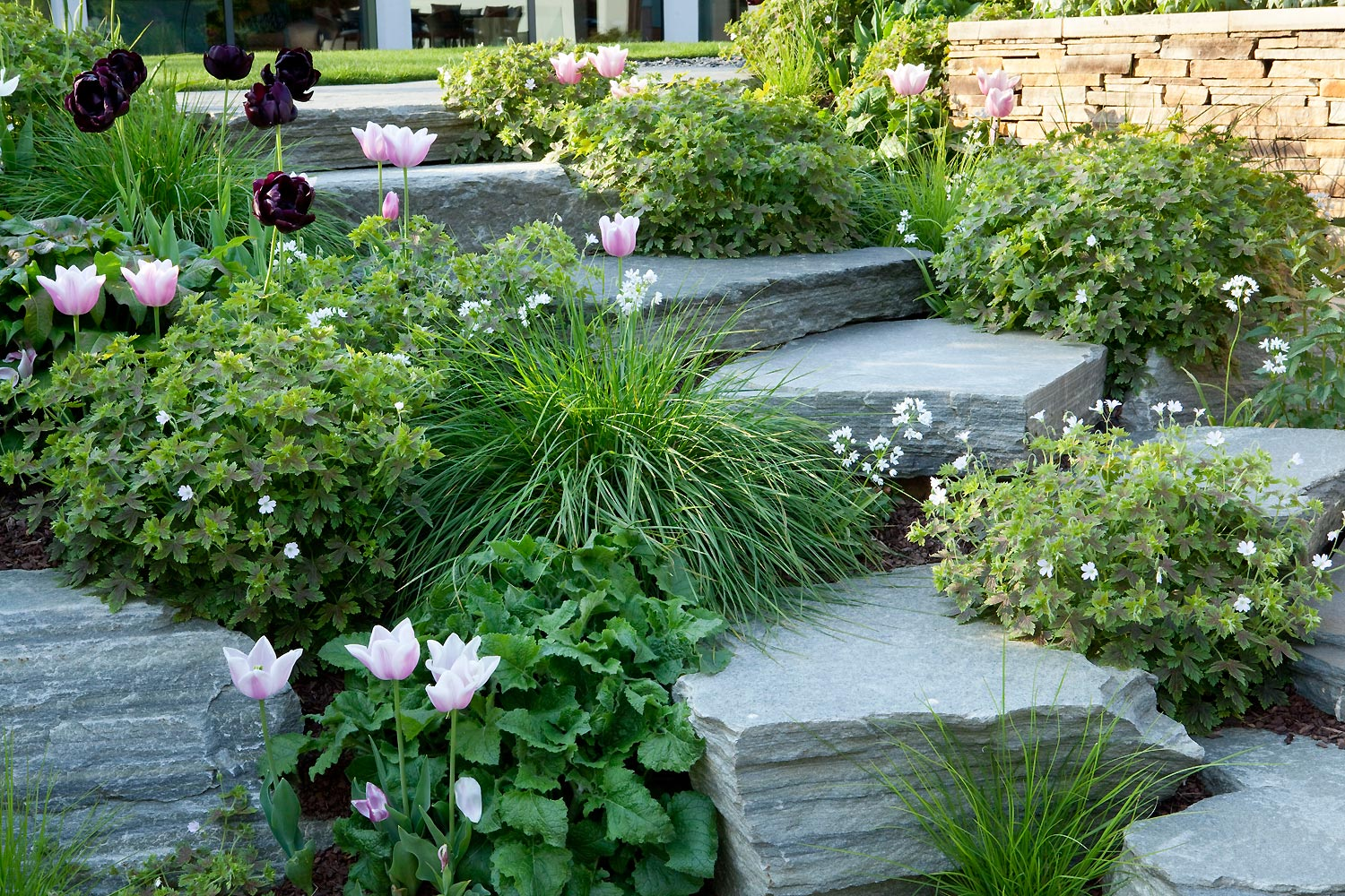 In love with beauty julie toll landscape garden design for Beautiful garden plans