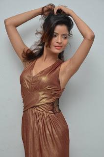 Actress Gehana Vasisth  Stills in Sleeveless Long Dress  252811.jpg
