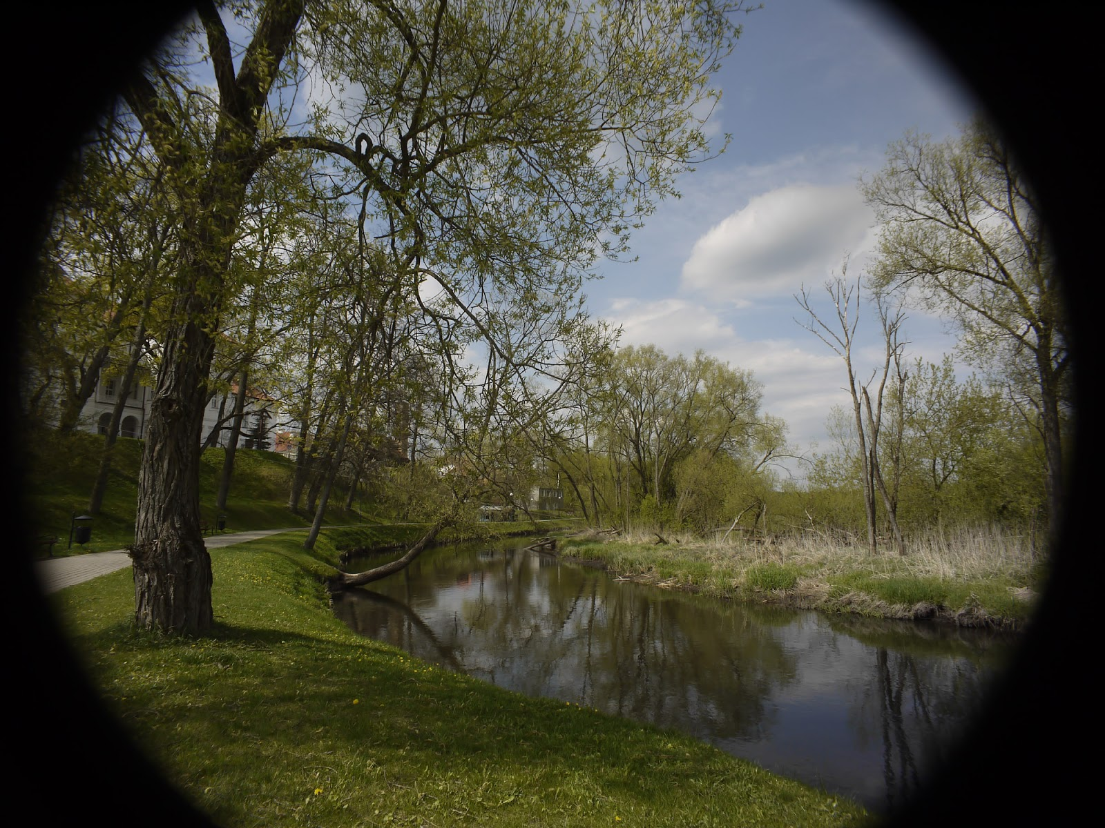 Tevidon 10/2 @11 - wide angle landscape (full sensor).