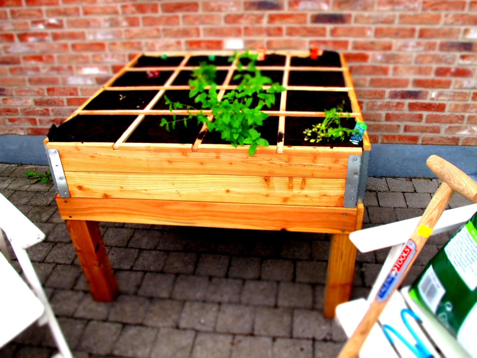 Vierkante Meter Tuin : Vierkante meter tuin
