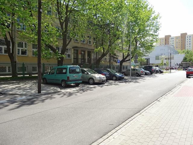 Stare drzewa na terenie SP nr 163 przy ulicy Osieckiej