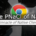 The Pinnacle of Native Client - Practical Chrome 29