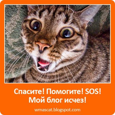 SOS мой блог исчез!