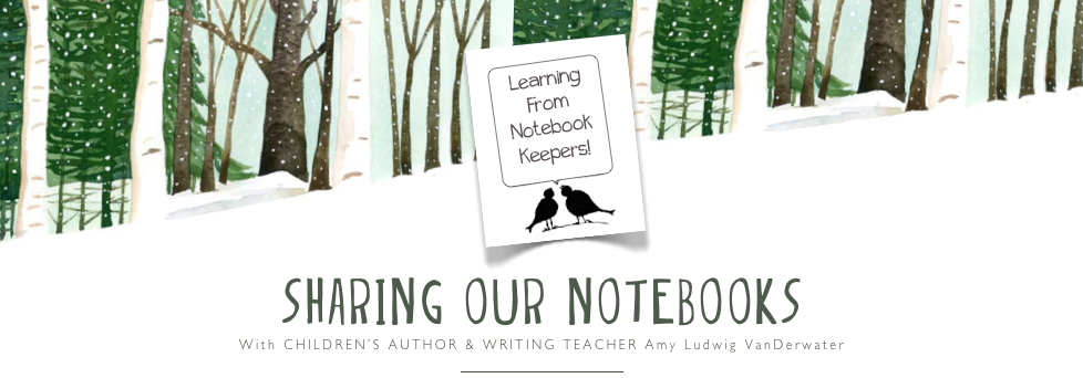 Sharing Our Notebooks
