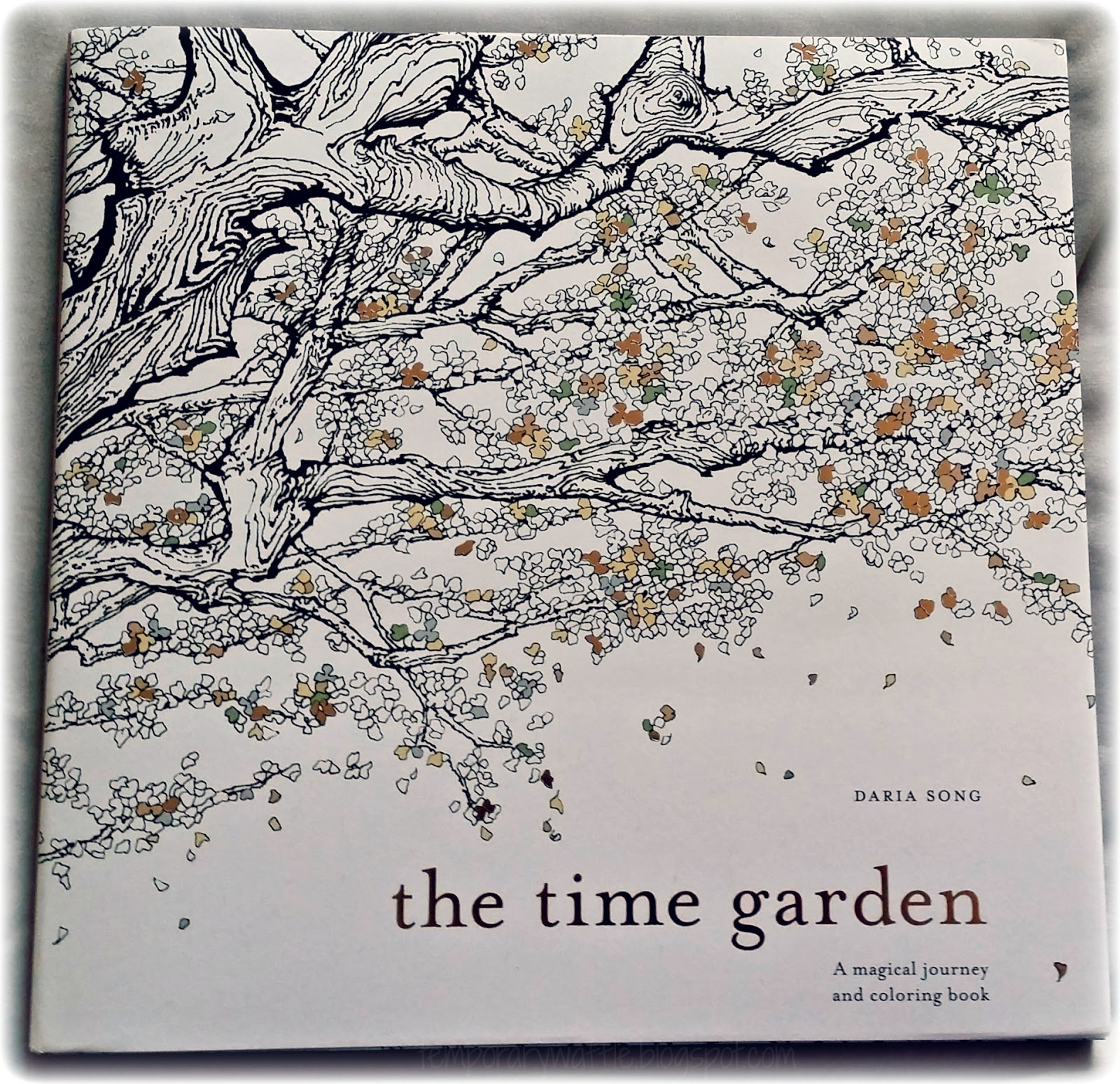 Explore The Magic Of Time Garden By Daria Song A Magical Journey And Coloring Book In One You Can Get Lost Inside Cuckoo Clock Inspired