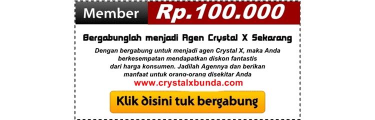 Daftarkan Diri Anda Sebagai Distributor Crystal X Sekarang Juga