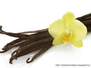 vanília hatásai, vaníliás recept, vanília jótékony hatásai, vanília felhasználása