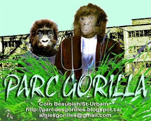AmiEs du parc des Gorilles