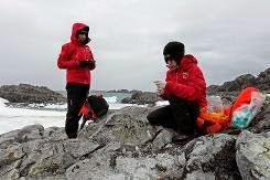 Cientistas chilenos estudam superbactérias antárticas para novos antibióticos