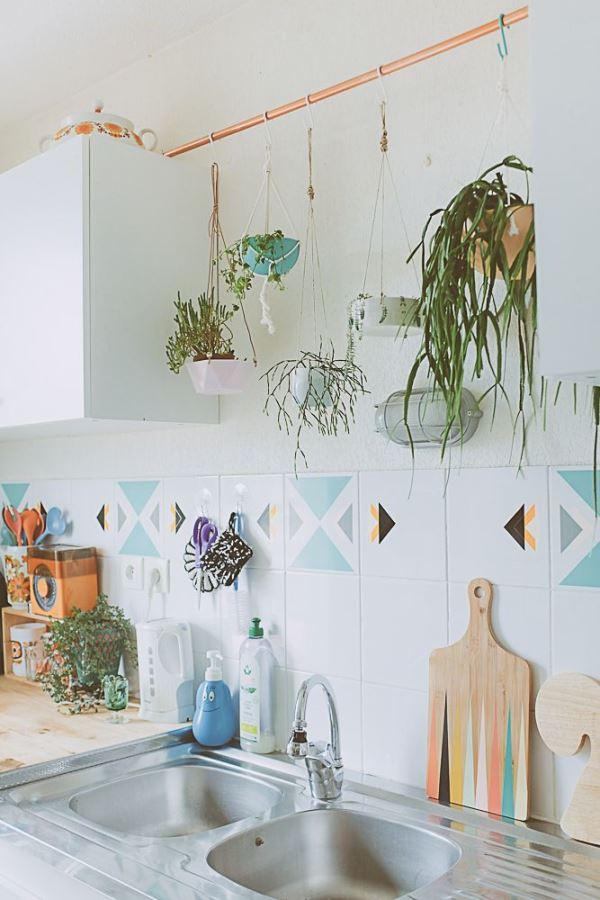 Las 5 mejores ideas para tener plantas en casa la for Design casa on line