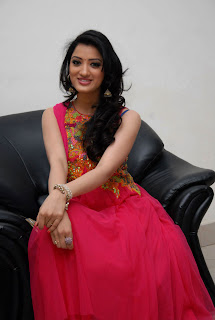 Richa Panai Latest Picture Gallery in Salwar Kameez