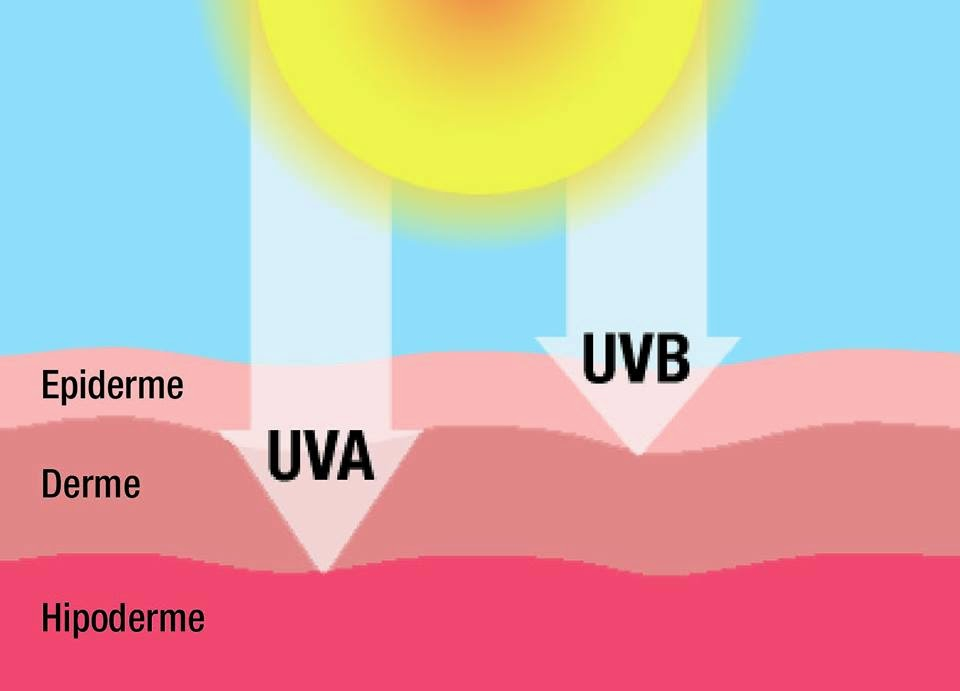 7cf9fd43b4d41 A pele que habito  Protetor Solar pt.1  radiação e filtros UV