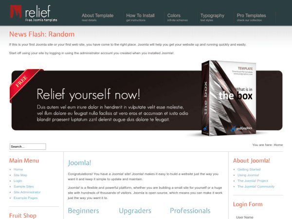 Relief Joomla Business Templates
