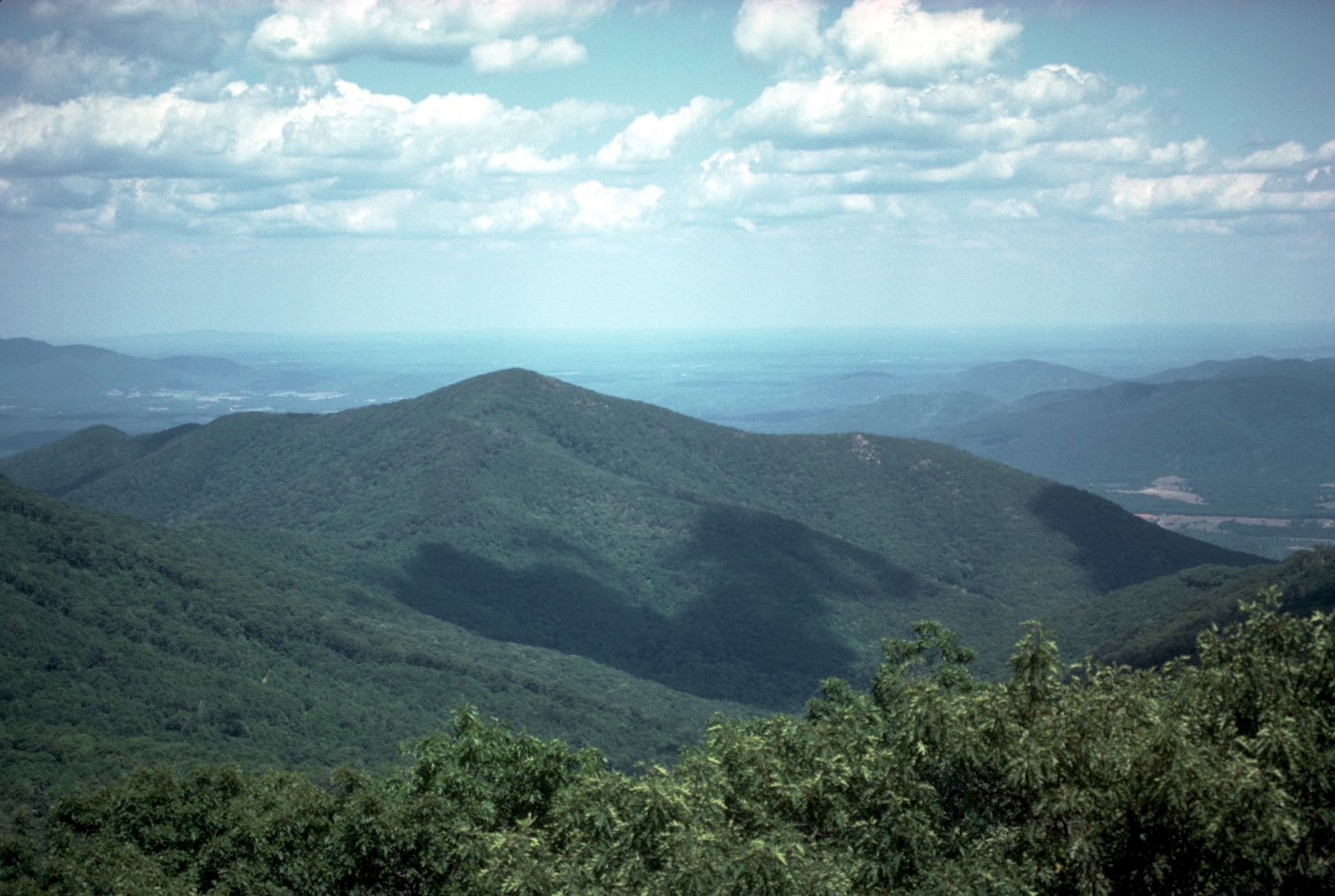 Appalachian Natural Beauty