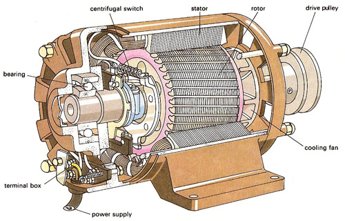 Jay Sanchaniya: Three Phase Induction Motor
