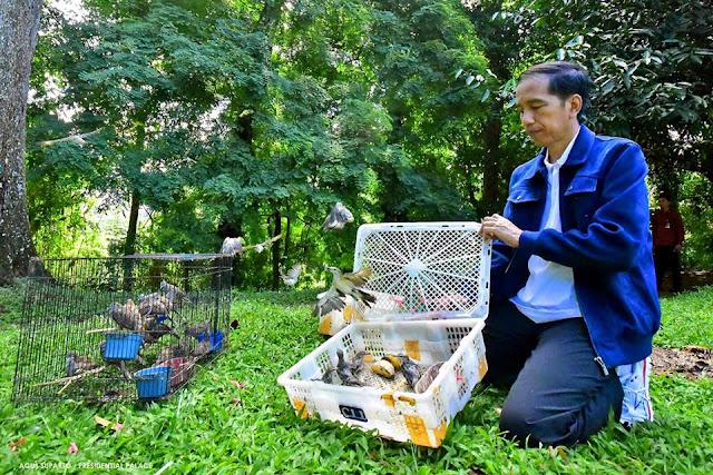 Jokowi Dinilai Keliru Borong Burung di Pasar Pramuka