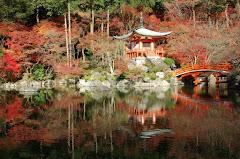 Japan in Fall