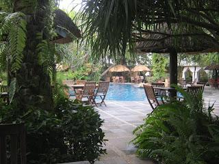 Foto kolam renang yang rindang