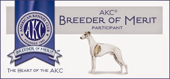 Breeder of Merit